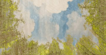 Jan Kath has introduced a new carpet named 'Magic View II' which is a fusion of Magic View and Cloud.   The Ruggist